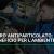 Il filtro antiparticolato: un beneficio per l'ambiente